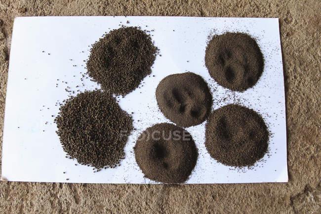 Varios polvos de té que se muestran en papel - foto de stock
