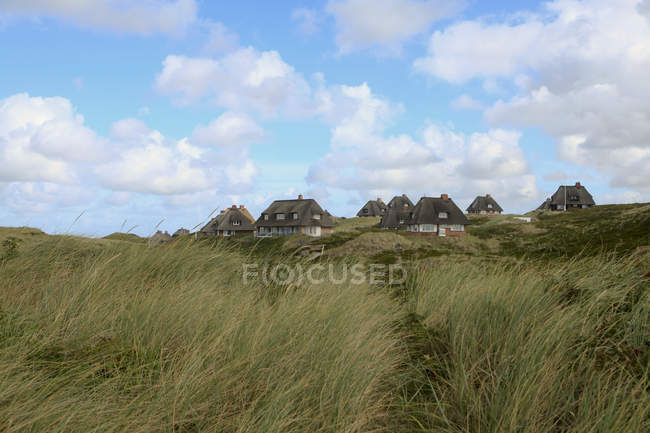 Vue à distance des maisons rustiques au terrain avec gazon venteux sur fond de ciel idyllique — Photo de stock
