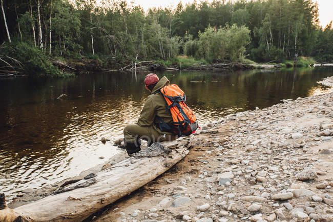 Vista posteriore dell'escursionista seduto sul tronco d'albero morto sulla riva del lago — Foto stock