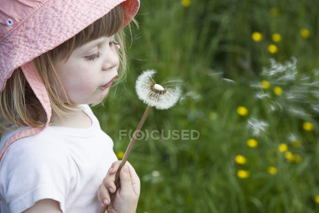 Close-up of Girl blowing dandelion flower on meadow — Stock Photo