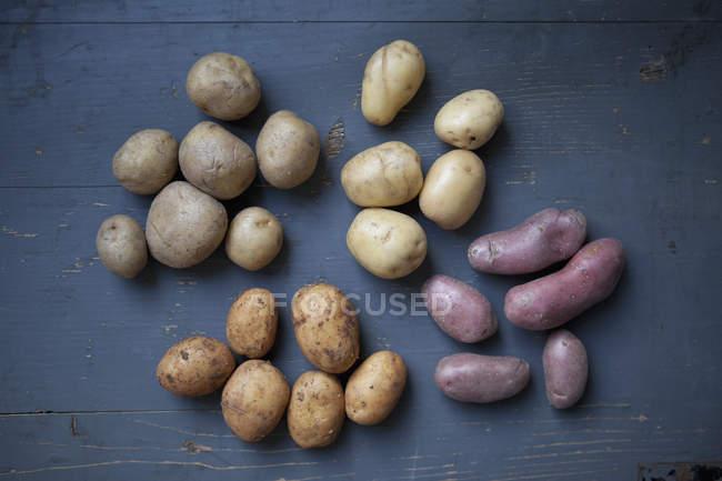Direkt oberhalb der Ansicht der verschiedenen Kartoffeln auf Holztisch — Stockfoto