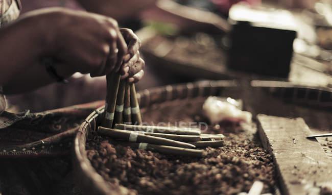 Bild Hände bilden der Zigarren beschnitten — Stockfoto