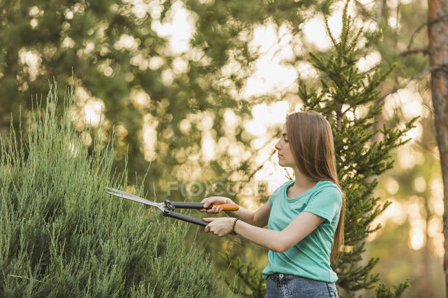 Young woman cutting plants with pruning shears at yard — Stock Photo