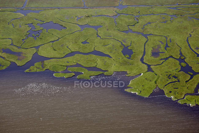 Several rivers flowing into body of water — Stock Photo