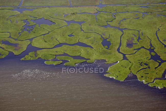 Несколько рек, впадающих в водоем — стоковое фото