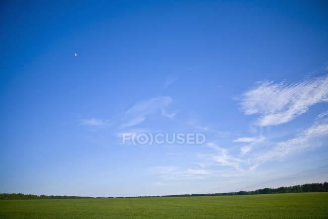 Живописный вид на зеленый пейзаж с голубое небо выше — стоковое фото