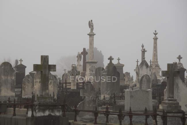 Tombe al cimitero contro cielo nebbioso — Foto stock