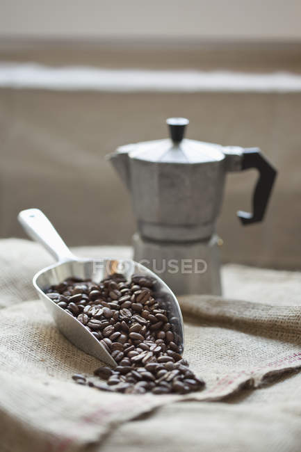 Still life of scoop full of coffee beans with coffee maker on sack — Stock Photo