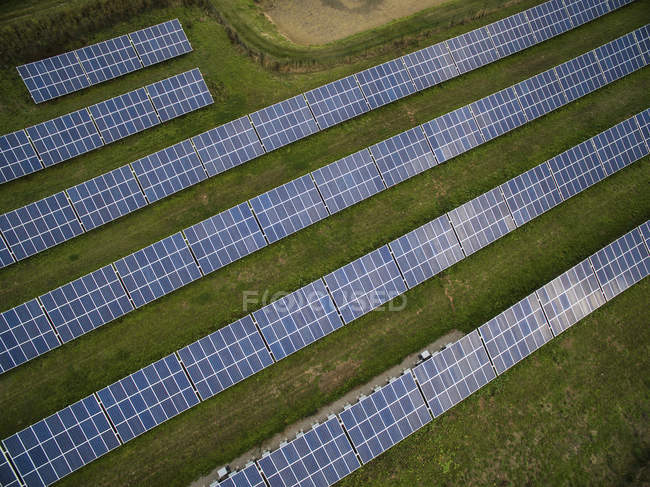 Aerial view of solar panels in field — Stock Photo
