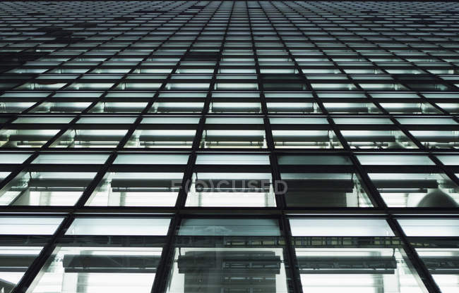 Full frame bottom view of office building windows — Stock Photo