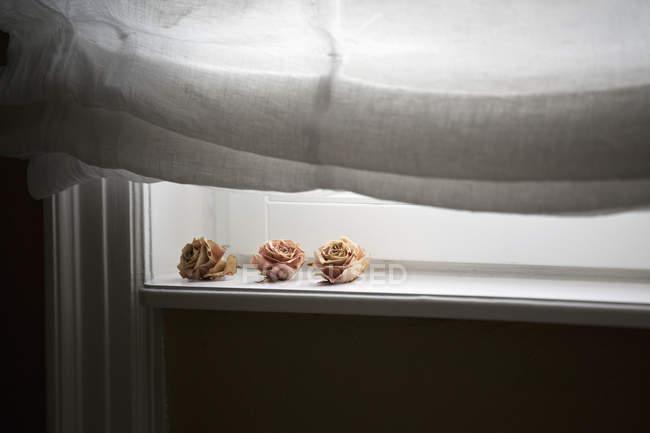 Stillleben mit getrockneten Rosen auf Fensterbank — Stockfoto