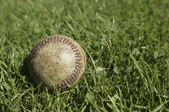 Still life of baseball in green grass — Stock Photo
