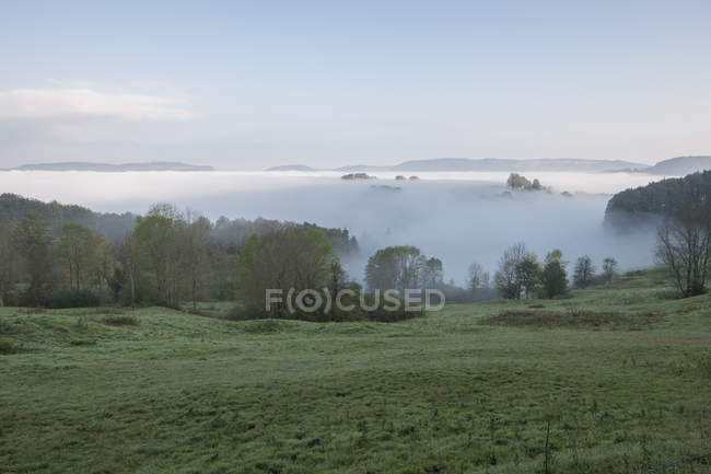 Scenic view of field in foggy weather over blue sky — Stock Photo