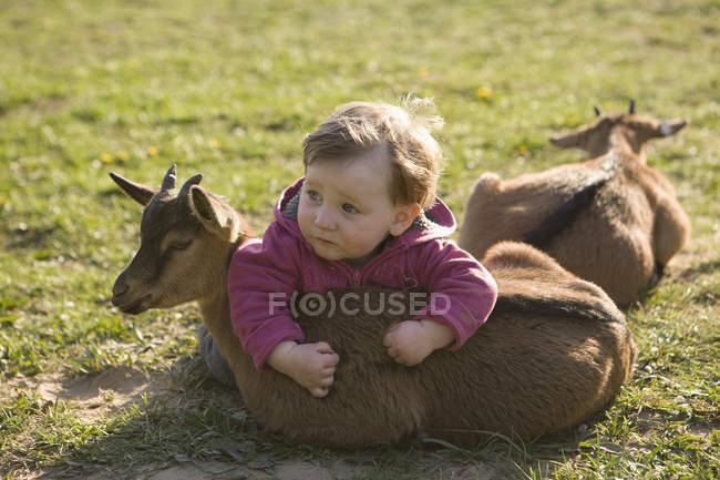 Дитина дівчина лежав на Козеня на траві і дивитися вбік — стокове фото
