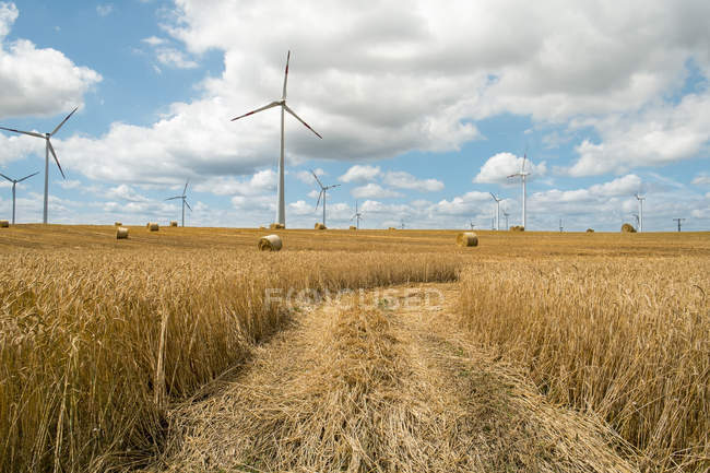 Vista das turbinas eólicas no campo agrícola no dia ensolarado — Fotografia de Stock