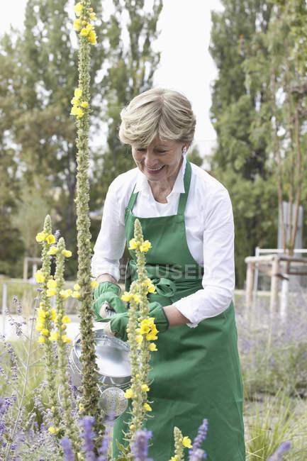Donna matura che innaffia pianta nel giardino — Foto stock