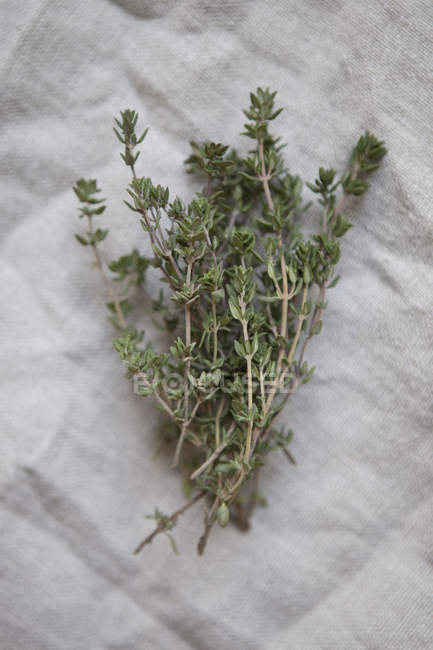 Top view of bunch of thyme on paper — Stock Photo