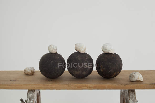 Snail shells and black spheres on wooden workbench — Stock Photo