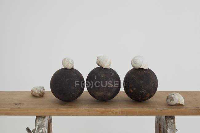 Conchas de caracol y esferas negras en un banco de trabajo de madera - foto de stock