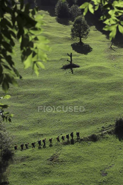 Una línea de excursionistas paseando por la verde ladera - foto de stock