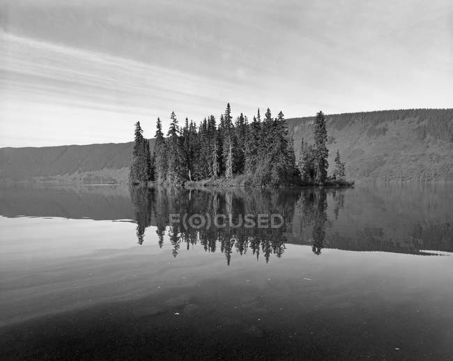 Reflection of cliffs and trees in Meziadin Lake, British Columbia, Canada — Stock Photo