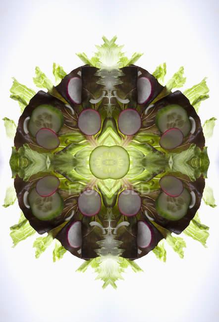 Композитний дзеркальний штук змішаних овочевий салат на лайтбокс — стокове фото