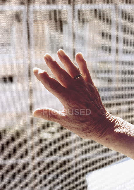 Close up of senior woman hand — Stock Photo