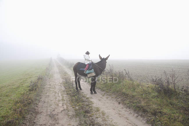 Girl riding donkey on dirt road amidst field during foggy weather — Stock Photo
