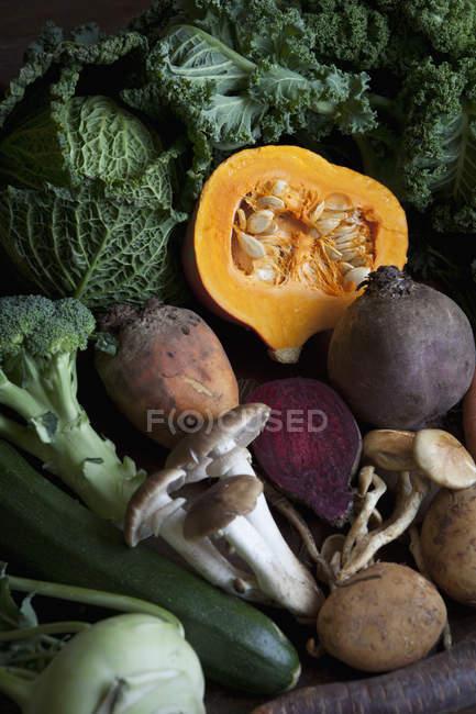 Полный кадр выстрел свежих овощей и грибов — стоковое фото
