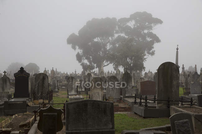 Vista a las lápidas en el cementerio brumoso - foto de stock