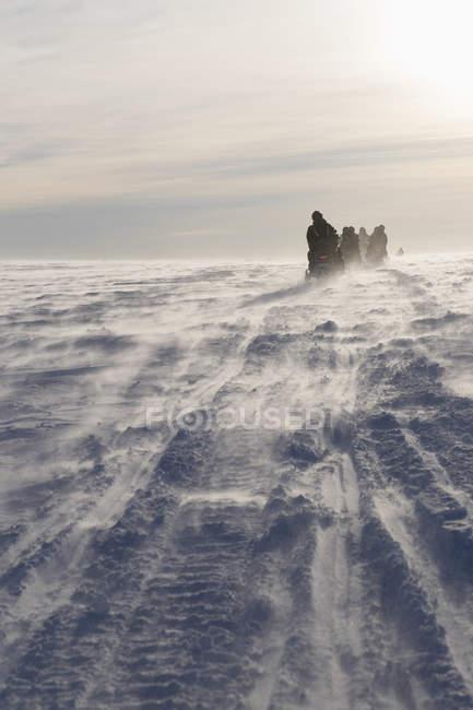 Menschen fahren Schneemobile gegen Himmel an sonnigen Tag — Stockfoto