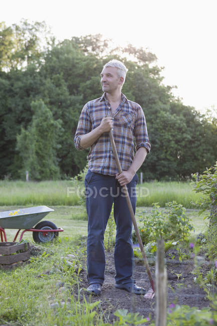 Mature man looking away while working in vegetable garden — Stock Photo