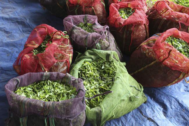 Vista de ángulo alto de sacos llenos de hojas de té - foto de stock