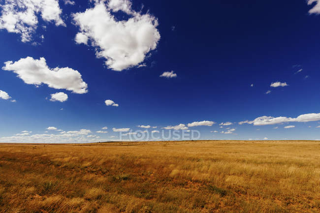Paesaggio idilliaco di campo agricolo contro cielo blu — Foto stock