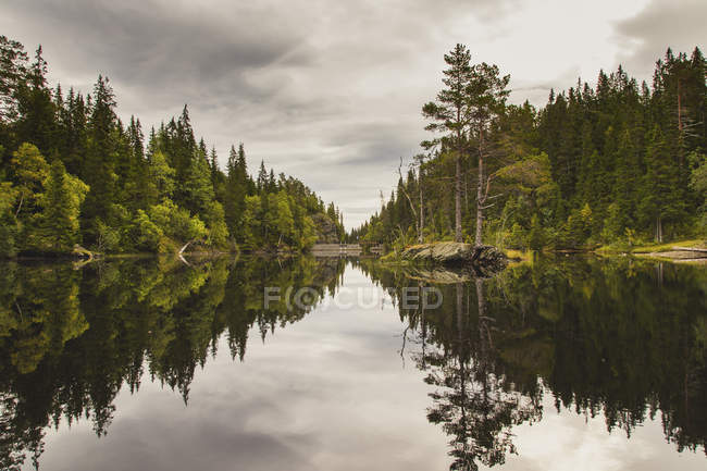 Idyllic view to trees reflecting in calm lake surface — Stock Photo