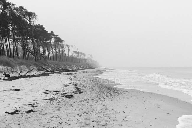 Tranquil view of foggy sand coastline — Stock Photo