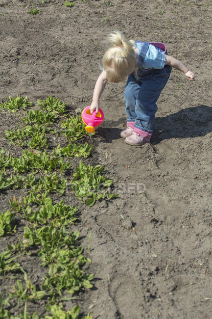 Girl watering plants with watering can in garden — Stock Photo
