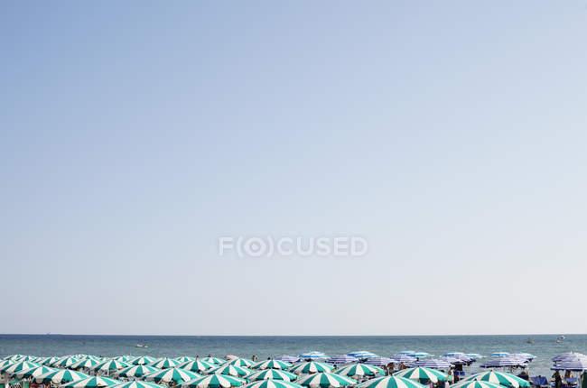 Парасолі пляжні проти ясного неба — стокове фото