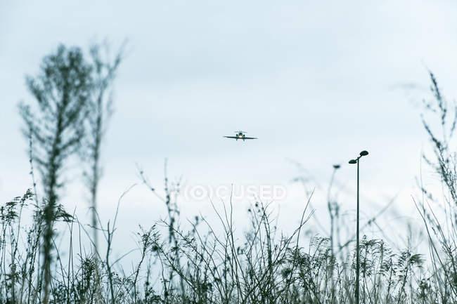 Vista de ângulo baixo de avião voando contra o céu — Fotografia de Stock
