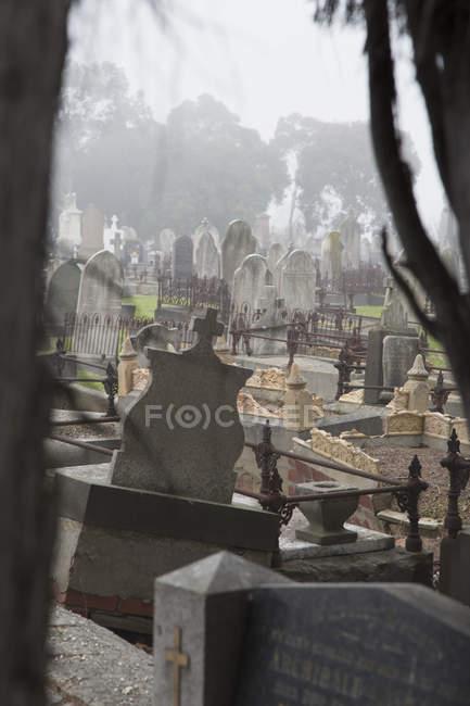 Vue panoramique pour incliner les pierres tombales au cimetière, Melbourne, Victoria, Australie — Photo de stock
