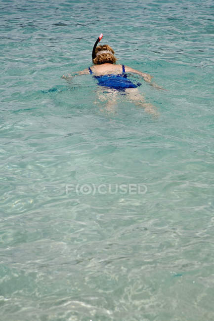 Rear view of woman snorkeling in sea — Stock Photo