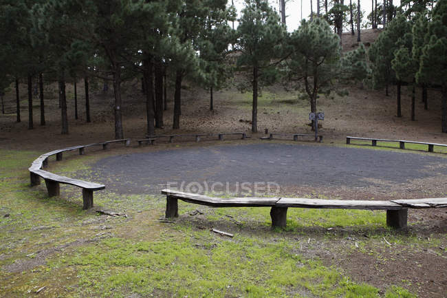 Wooden benches arranged in circle at park — Stock Photo