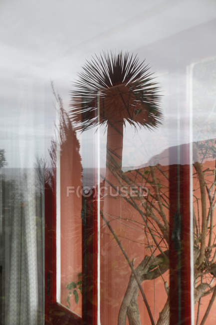 View through window and reflection of outside — Stock Photo