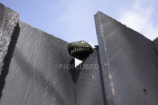 Giocattolo testa del dinosauro appoggiata fuori muro di cemento — Foto stock