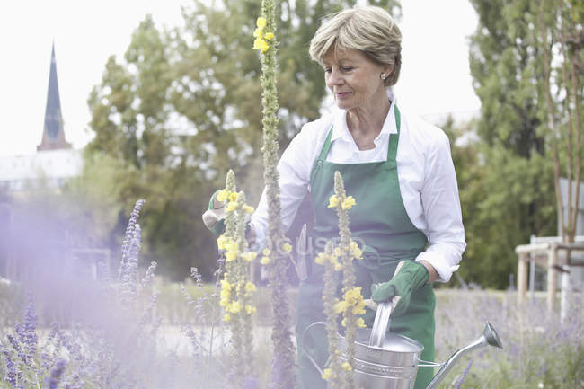 Mature woman holding watering can in garden — Stock Photo