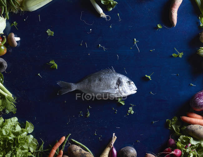 Top view of fish amidst vegetables on blue table — Stock Photo