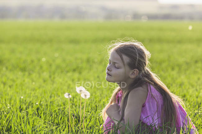 A young girl kneeling down to look curiously at a dandelion in a field — Stock Photo