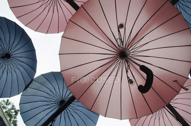 Direkt unter Aufnahme von Glühbirnen unter rosa und blaue Schirme — Stockfoto