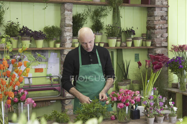 Mature man gardening plant in flower shop — Stock Photo