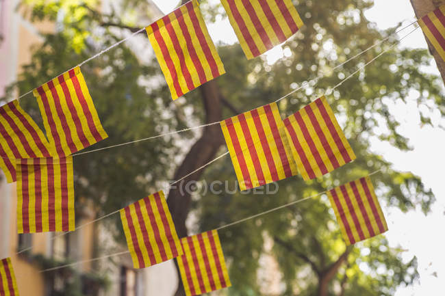 Low angle view of striped flags against trees — Stock Photo